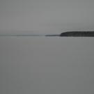 fin-113