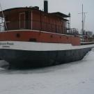 fin-188